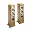 Acoustic Energy Radiance 2 Floor standing speakers review