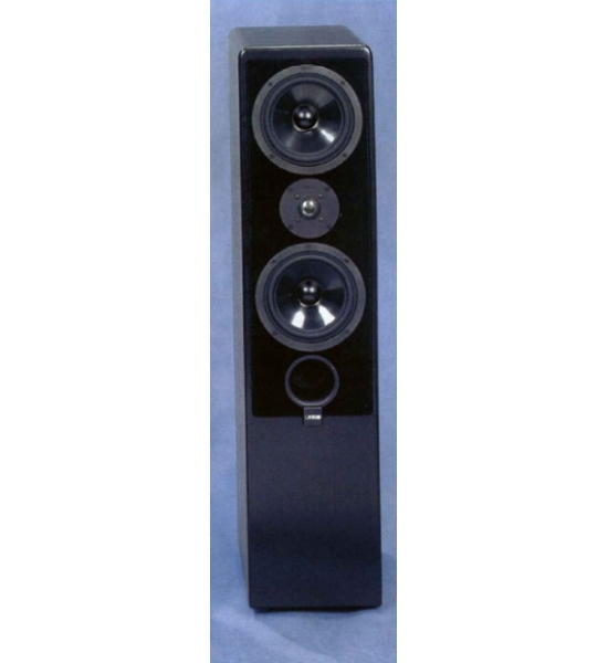 Floor standing speakers Canton Ergo 72 DC review and test