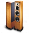 Acoustic Energy Aelite 3 Floor standing speakers